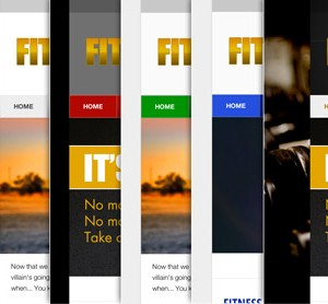 FitPro Colors